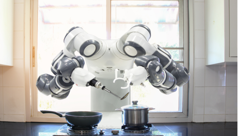 The Robot And The Smart Home